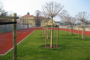 66. Mittelschule, Dresden - Bauplanung, Projektsteuerung und Bauprojektmanagement SHP Architekten, Dresden