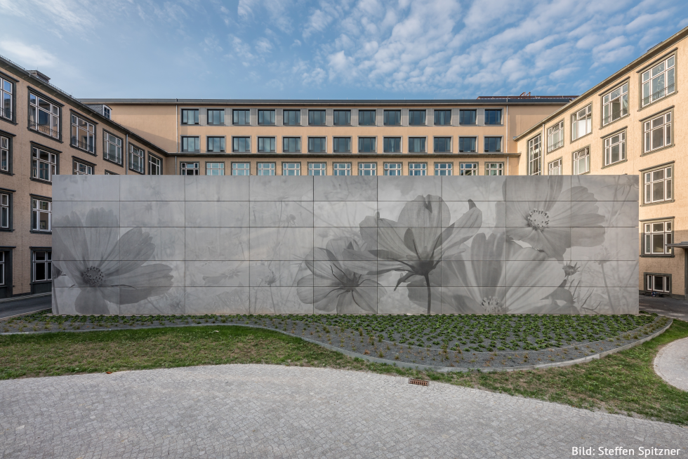 Center for Advancing Electronics Dresden (CfAED)